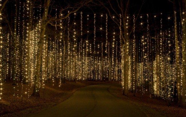 Callaway Gardens Christmas Lights Grosir Baju Surabaya