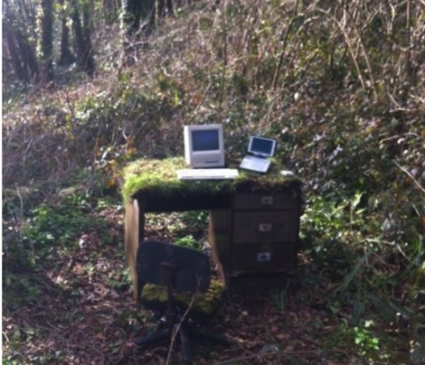 computer in the woods